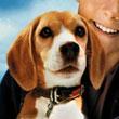 Shiloh Movies